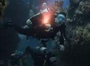 Veteran scuba divers.