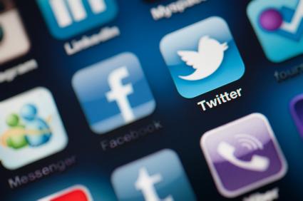 Twitter logo button.